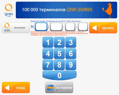 Qiwi-step4